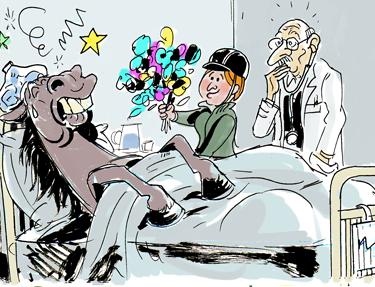 fièvre de cheval